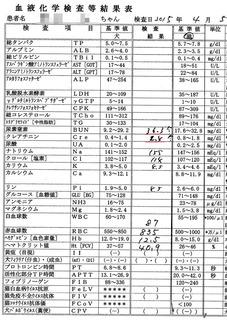 2015/4/5クロ検査結果