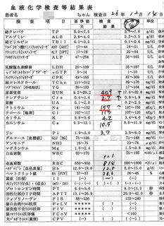 12/14血液検査結果