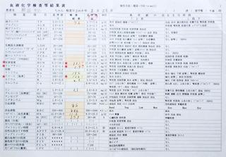 2014/8/23クロ血液検査