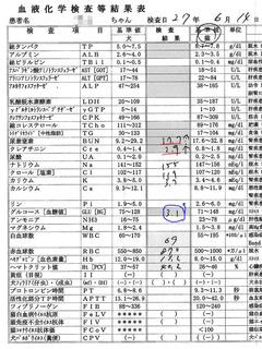2015/6/14クロ血液検査結果