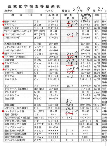 シロの血液検査結果2015/8/21