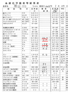 2015/1の検査結果