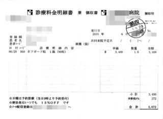 2015/6/29クロのネフガード代